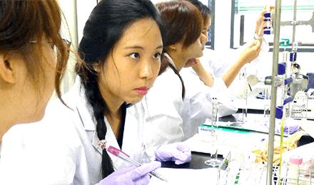 International Undergraduate Program