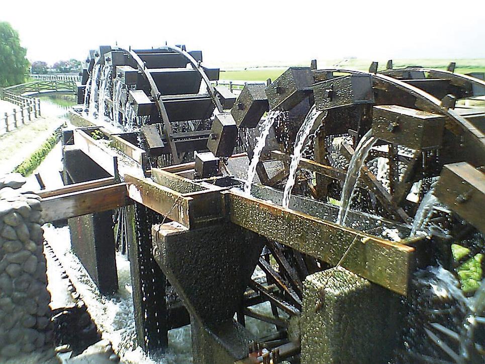 Irrigation & Water Management