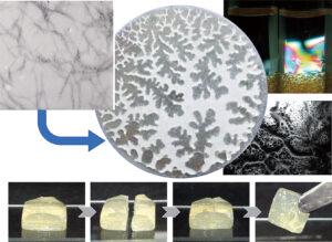 Biomacromolecular material