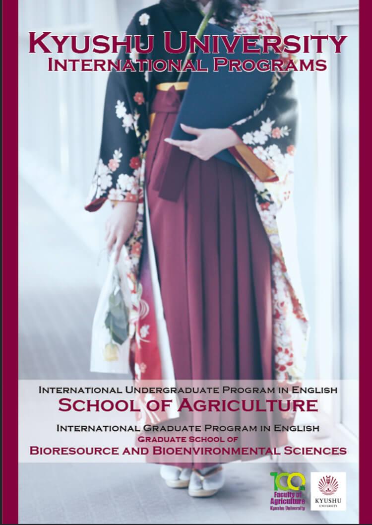 The brochure of the International Programs